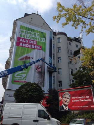 grüne plakatieren